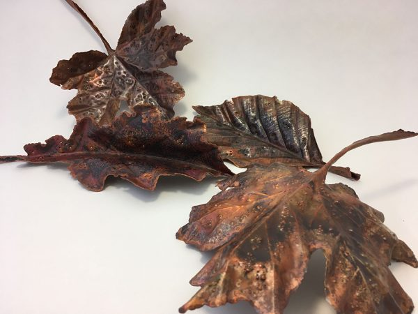 Group of copper leaves