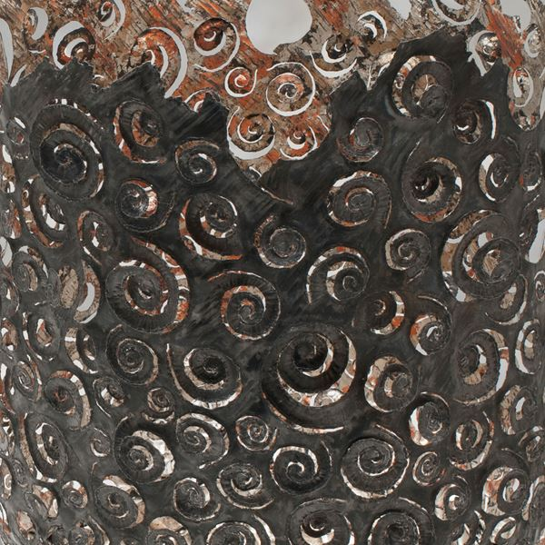 Ammonite close up
